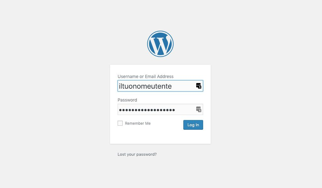 Login WordPress Admin